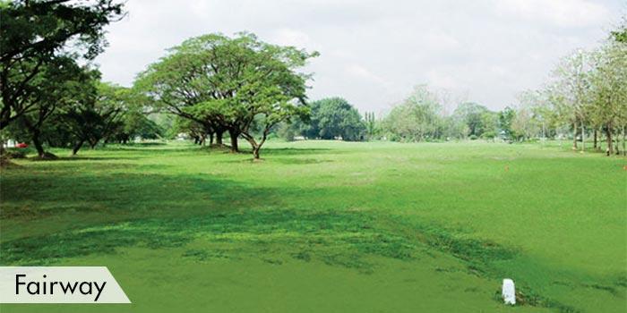 Air Force City Golf Club Fairway
