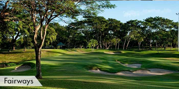 Alabang Country Club Fairways
