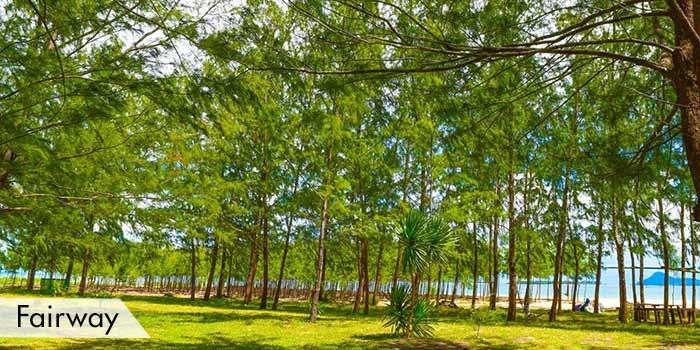 Apuao Grande Island Golf Fairway