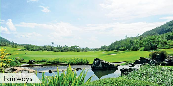 Ayala Greenfield Golf & Leisure Club Fairways