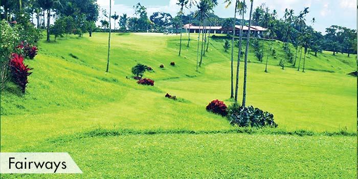 Bacolod Golf & Country Club Fairways