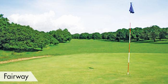 Bravo Golf Hotel Resort & Spa Fairway