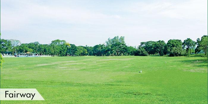 Camp Aquino Golf CLub Fairway