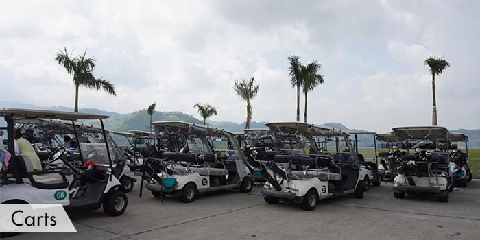 Clark Sun Valley Golf & Country Club Carts