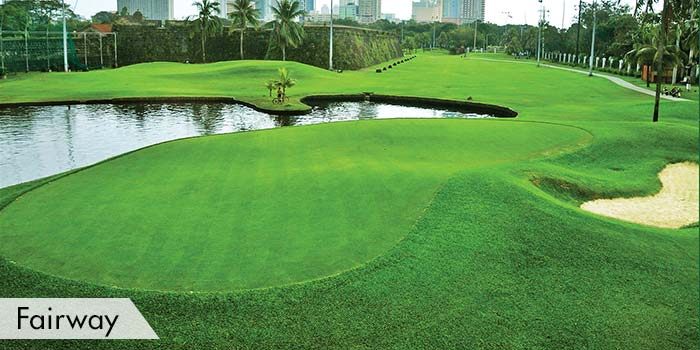 Club Intramuros Golf Course Fairway
