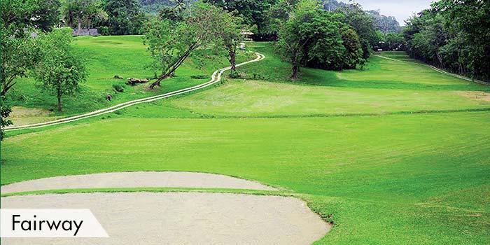 Fairway at Davao City Golf Club