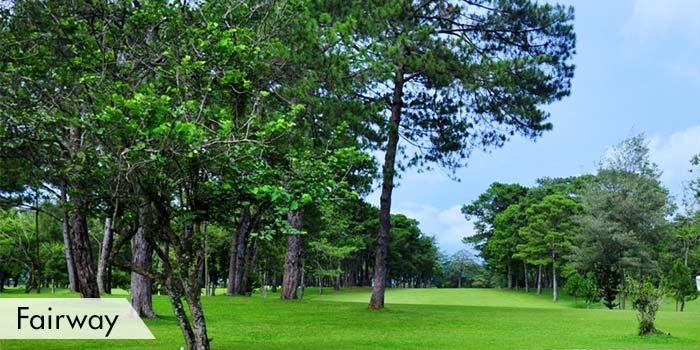 Fairway at Del Monte Golf Club