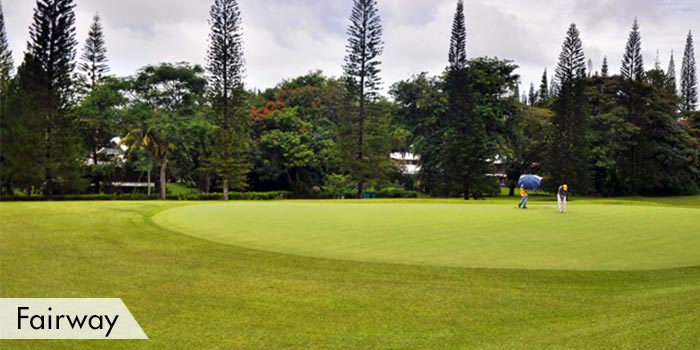 Fairways at Dole Kalsangi Golf Club