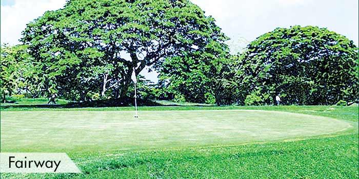Edwin Andrews Air Base Golf Club Fairway