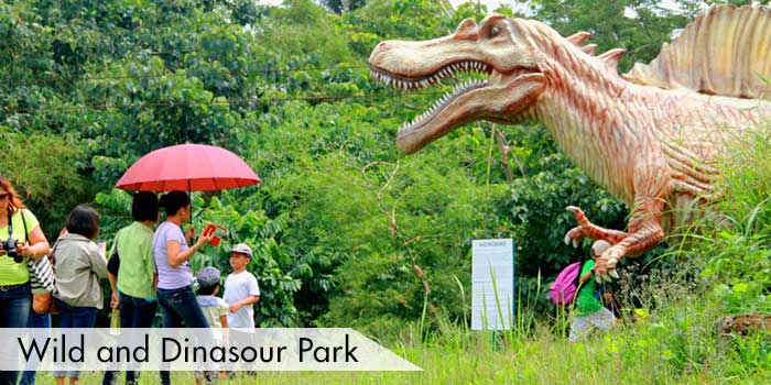 Wild and Dinasour Park at Haciendas de Naga Sports Club, Inc.