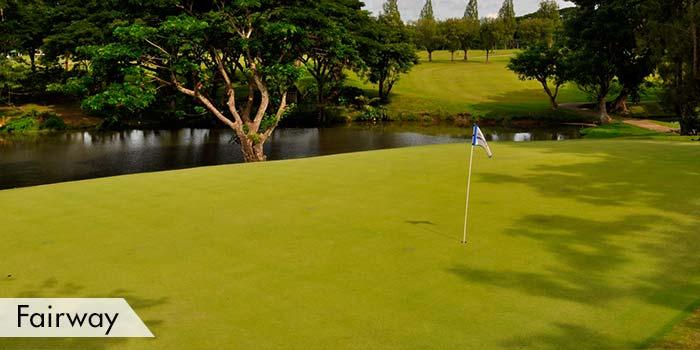 Iloilo Golf & Country Club, Inc. Fairway