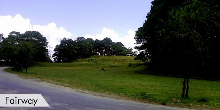 Lepanto Golf Club Fairway