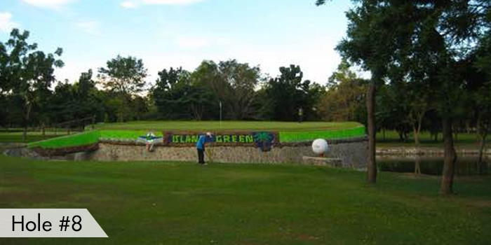 Mactan Island Golf Club Hole 8