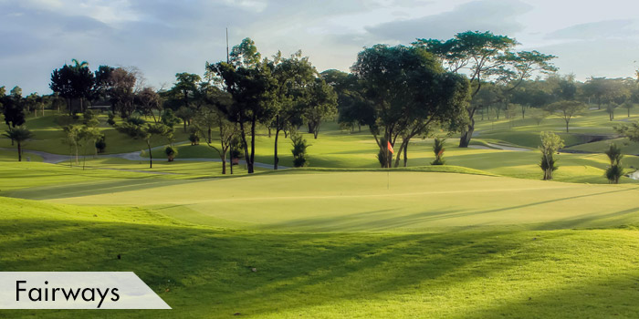 Manila Golf & Country Club Fairways