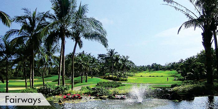 Manila Southwoods Golf & Country Club Fairways