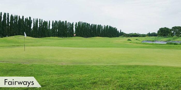 Mercedes Plantation Golf & Country Club Fairways