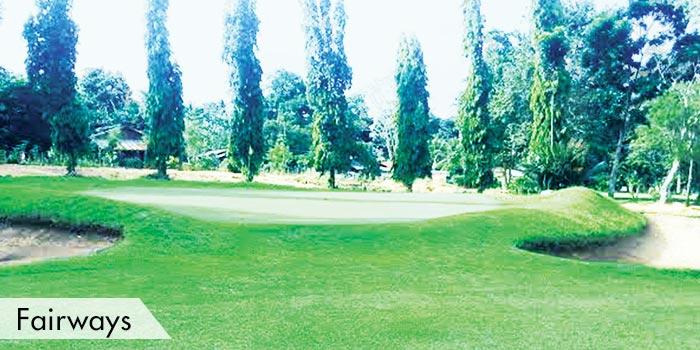 Mount Malindang Golf & Country Club Fairways
