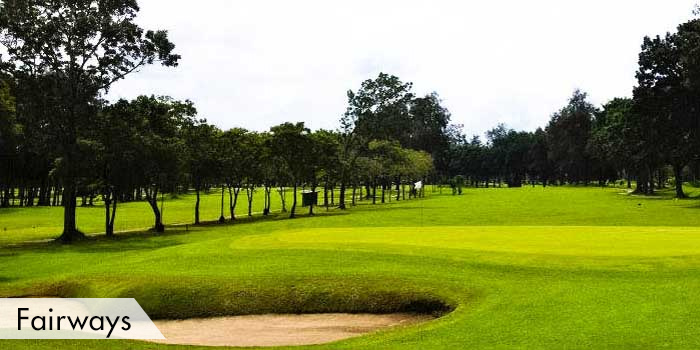 Negros Occidental Golf & Country Club, Inc. Fairways
