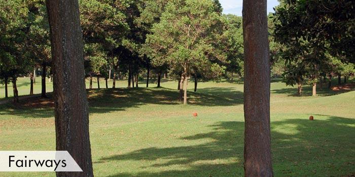 Pamplona Plantation Golf & Country Club Fairways