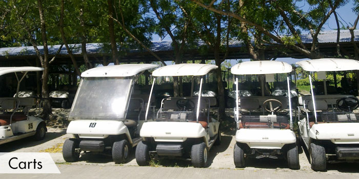 Queens Island Golf & Resort Carts