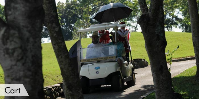 Rancho Palos Verdes Golf & Residential Estates Cart