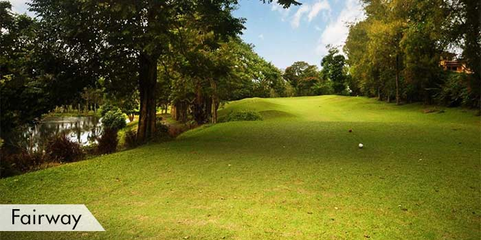 Royale Tagaytay Country Club Fairway