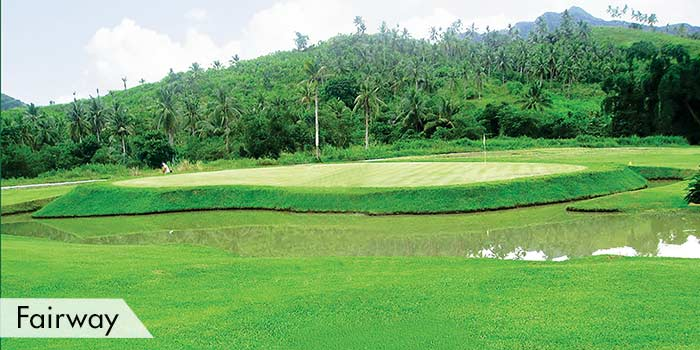 San Juanico Park Golf & Country Club Fairway