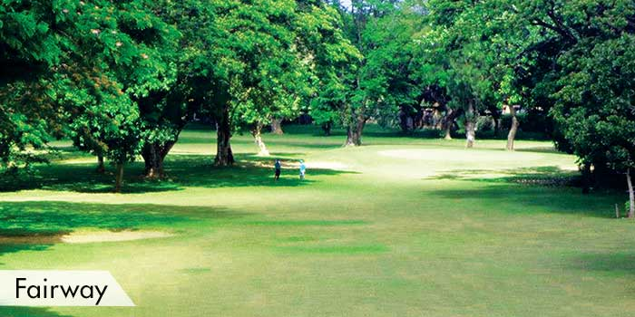 San Pascual Golf Club Fairway