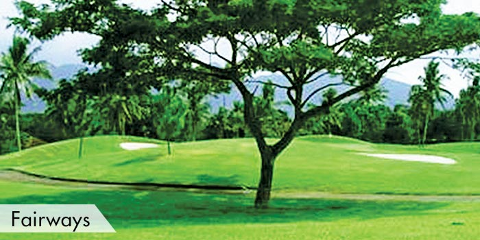 Western Command Golf Club Fairways