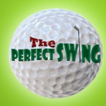 Perfect Swing Driving Range