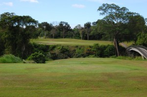 Canlubang Golf Course Reviews