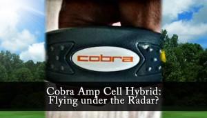 Cobra Amp Cell Hybrid: Flying under the Radar?