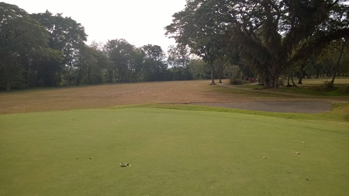 Apo Golf and Country Club 15th-fairway-from-green