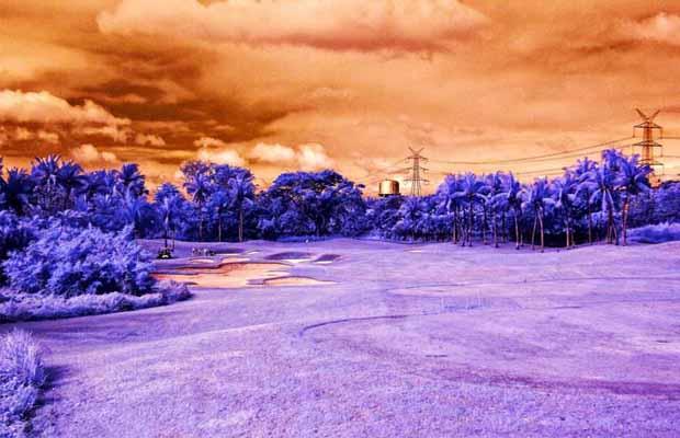 MANILA SOUTHWOODS (Masters Course) Hole 17