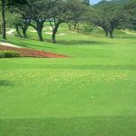 Coming Changes for Mimosa Golf & Country Club