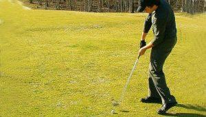 lefty swing